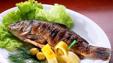 Fischschmaus
